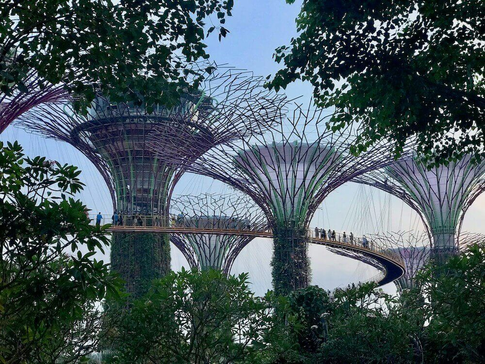 gardens-by-the-bay-singapur-tipps