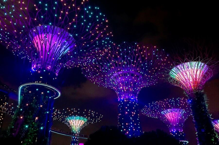 supertrees-gardens-by-the-bay-singapur